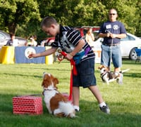 West Fargo Parks Dog Show @ North Elmwood Park Shelter | West Fargo | North Dakota | United States