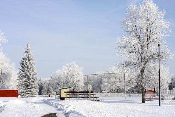 WF North Elmwood Park